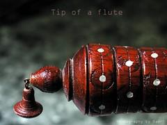 Tip_of_a_flute (Badruddeen) Tags: wood music macro closeup handicraft wooden close craft flute tip