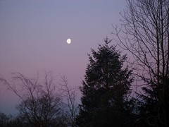 lilac moon at daybreak (Lidwit) Tags: morning moon sunrise geotagged dawn scotland early north cumbernauld daybreak lanarkshire