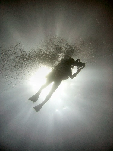 CIMG2167 Diver Silhouette