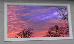 reflection (RickyB-Photography) Tags: seattle sunset flower bird oregon barn sunrise canon portland washington nikon colorful bright balloon olympus panasonic columbiariver waterfalls rainier longview hdr sthelens d3 columbiacity selectivecolor d300 d90 scappoose lx5 d300s