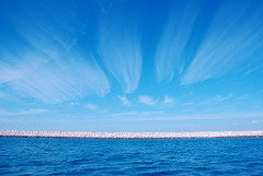 A Blue World (Ehsan Khakbaz) Tags: desktop blue windows sea wallpaper sky cloud landscape bluesky persiangulf ehsan bluesea nikonstunninggallery  ehsankhakbaz  khakbaz  upcoming:event=148177 diamondclassphotographer flickrdiamond