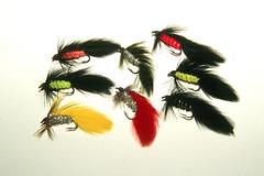 Matuka assortment (rob_valine) Tags: fishing bass flies flyfishing trout streamers flytying kodakelitechrome100 yashicafx3super2000 tiffen81afilter vivitarseries12890mmf2835lens
