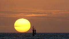 Playa Sunset ( RocknPack ) Tags: sunset sea sun sol beach mar ray playa aruba rayos