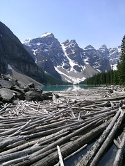 Moraine Lake (suey_j) Tags: lake rockymountains morainelake canadianrockies