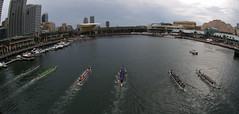 Dragon boat races in Darling Harbour - by Pieter Pieterse