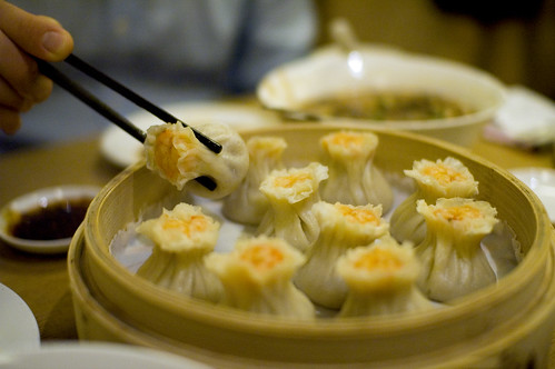 Best Dumplings in the World