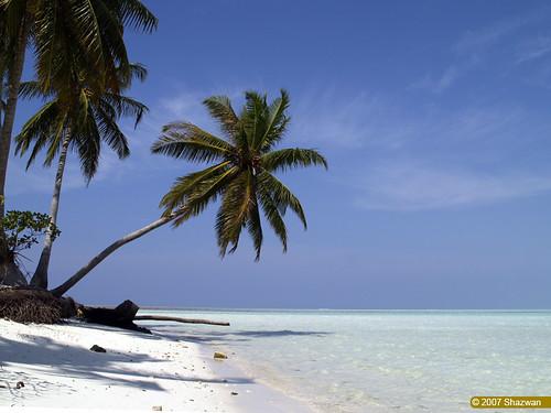 Beach by shazwan