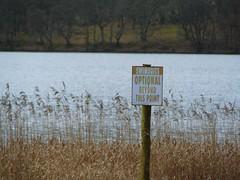 Loch Ard 2 (garlies) Tags: scotland countryside loch ard