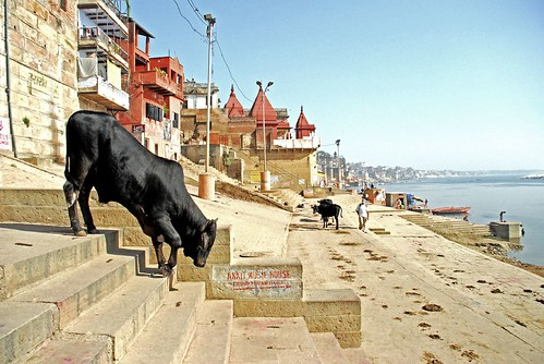 Down to the Ghats - Varanasi.