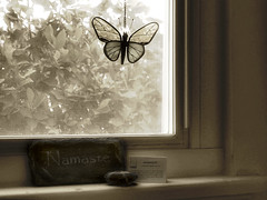 Window Light (Auntie K) Tags: light window butterfly quiet looking unity greeting namaste outward auntiek auntikhaki inward