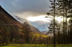 First Ray - Scottish Highland - 003 (Akilselvan Photography | www.akilselvan.com) Tags: scotland unitedkingdom firstray snow mountains scenery trees colors sunny akilselvanphotography nikond7000 landscapes outdoor fortwilliam nearbennevis