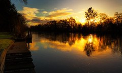 Thames Sunset in Pure Gold (Flying Fin) Tags: sunset reflection water thames river golden dock quality thamesriver clivedon hiddenman eveningsunshine abigfave impressedbeauty 07explore131206