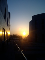 Sunset in university