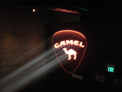 Camel in Smoke