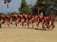 Rengma performance (dibopics) Tags: india festival tribal assam hornbill kohima nagaland dances dimapur dibopics angami hornbillfestival chakhesang rengma pochury