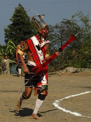 king chasing prince (dibopics) Tags: india festival tribal assam hornbill kohima nagaland dances dimapur dibopics angami hornbillfestival chakhesang rengma pochury