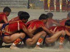 dusty dancing (dibopics) Tags: india festival tribal assam hornbill kohima nagaland dances dimapur dibopics angami hornbillfestival chakhesang rengma pochury