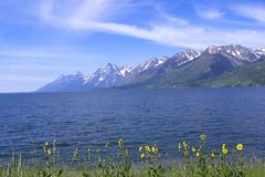 Teton National park (Saillaur) Tags: lake mountains wyoming tetons
