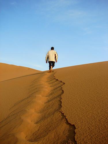 Leader on sand dune