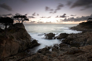 Long Exposure, Lone Cypress®