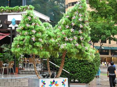 Christmas Tree Minis