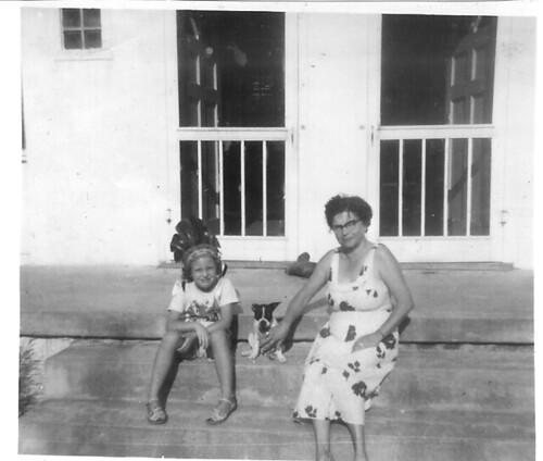 1954vazelma