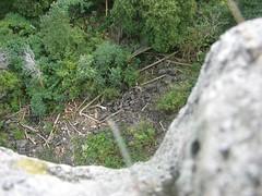 Kelso Hiking Sept 06 163 (travellingzenwolf) Tags: hiking kelso escarpment zenwolf