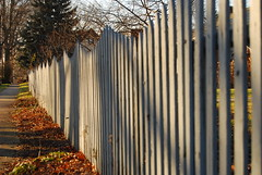 Late Day Fence