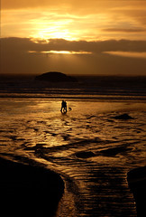 Beach Walk at Sunset (Colin I. Mills) Tags: sunset anniversary istockphoto vancouverisland longbeach tofino 2007 chesterman chestermanbeach challengeyouwinner knepomuk