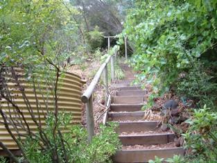 DSCF9930去果園階梯