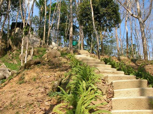 サムイ島‐paradise park farm-walking trail7