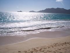 hawaii06 031