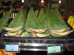 aloe leaves at Rainbow Grocery