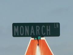 monarch lane
