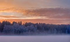 Evening fog (Krogen) Tags: winter nature norway landscape norge vinter natur norwegen olympus c7070 noruega scandinavia akershus romerike krogen landskap noorwegen noreg ullensaker skandinavia jessheim photomatix nordbytjernet abigfave