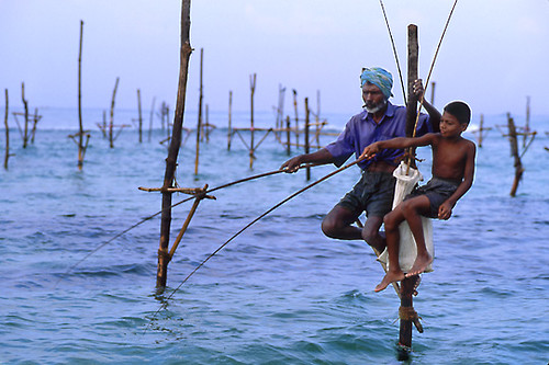 Stilt Fishing Father