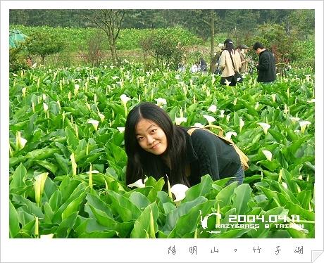 2004_0411Image0060