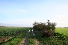 balade au Nord-Est d'Echarcon - 030