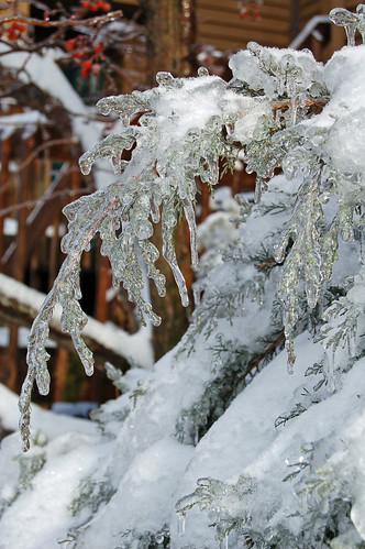 Ice Pic 14
