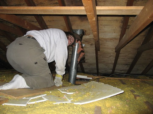 Me investigating the attic