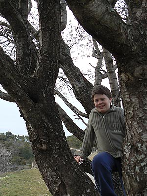Paul dans les arbres à Bargème