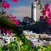 San Francisco - Coit Tower from Lombard Street