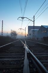 Matins de boira (ancoay) Tags: boira tren vias railes amanecer sunrise canon600d 7dwf ancoay fog mist