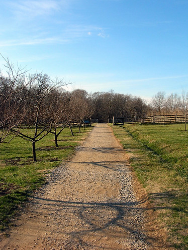 A path through the Mount Vernon orchards