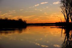 Clouds In The Water Ⅷ (mightyquinninwky) Tags: trees sky water clouds reflections evening december kentucky lexingtonky richmondroad fayettecounty centralkentucky ellserlielake