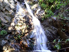 Trabuco Canyon Hike (FrogMiller) Tags: nature water outdoors waterfall spring natural hiking jim hike josh holy wilderness orangecounty oc theoc daytrip trabucocanyon wildnerness trabuco nedy holyjim babyhike