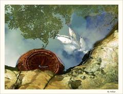 Artistic Real scene (Araleya) Tags: life travel reflection water rural river lumix fz20 fishing asia stream artistic lagoon panasonic laos vangvieng southasia artcore araleya abigfave thampukham