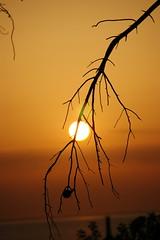 sunset Molyvos Lesvos (Geke) Tags: travel sunset summer island nikond50 greece lesvos vacations lesbos molyvos molivos mithimna