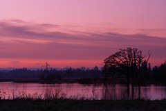 Pink sunset (tollen) Tags: sunset oregon reflections portland ilovenature wildlife sanctuary afterglow pinkandpurple abigfave nationalwildlifesanctuary