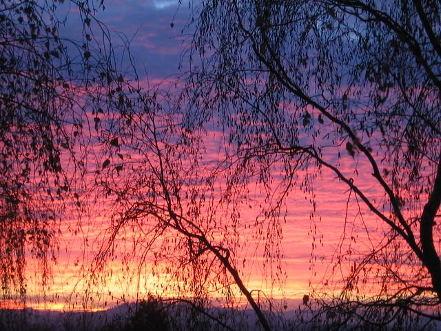 sunrise2-2